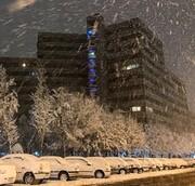 بارش برف در برخی مناطق تهران