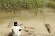 سیل سیستان | نگران گاندوها نباشید، زمستان گوشت نمیخورند