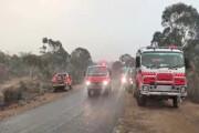 هشدار وقوع سیل در جنگلهای سوخته استرالیا