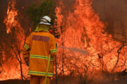 جبران آتش سوزی جنگلهای استرالیا با اجرای بازیهای ویدئویی