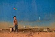 عکس روز | بازی پتکا