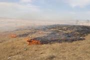 سوزاندن مزارع؛ عامل آلودگی هوا در بیلهسوار است