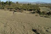 کشاورزان خسارت دیده در قزوین تسهیلات گرفتند