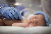 کاهش نگرانکننده آمار فرزندآوری در ایرانطی ۳۰ سال گذشته | چراغهای هشدار روشن شد