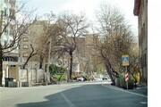 کوچه قورباغه در تهران کجاست؟