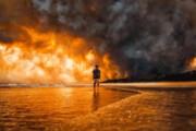 رقم عجیب وام بلاعوض دولت استرالیا به خسارتدیدگان جنگلسوزی