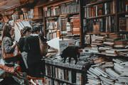 ویدئو | کتابفروشی شناور در آب | ونیز و زیباترین کتابفروشی جهان