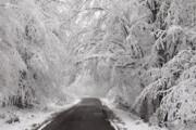 یخبندان در جنوب غرب کشور | کدام استانها برفی هستند؟