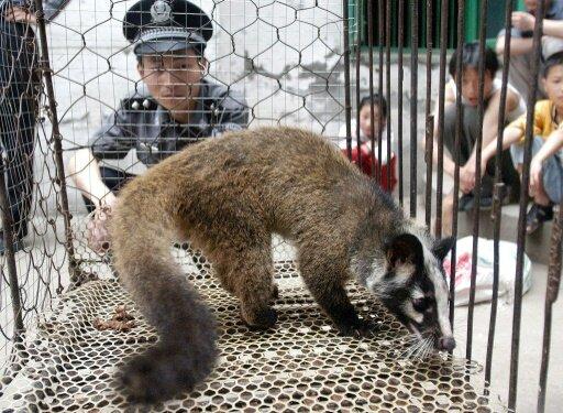 wild animal ban