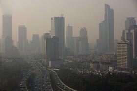 اماس ، آلزایمر، آلودگی هوا