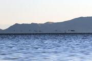 اختصاص ۳۰۰ میلیارد تومان برای انتقال آب از زاب به دریاچه ارومیه