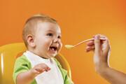 تولید مکمل غذایی نوزاد با جوانه حبوبات | مکملی برای تامین پروتئین نوزادان