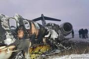 شواهد جدید از مرگ «آیتالله مایک» در سقوط هواپیما