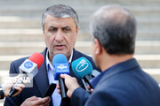 اسلامی: ایران و اوکراین به صورت مشترک جعبه سیاه را بررسی میکنند
