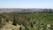 تهران را  از «دیارگاه تیناز» ببیند