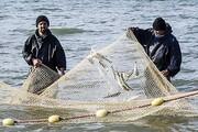 فرار ماهیها از خزر