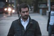 اما و اگرهای حضور شهاب حسینی در کاخ جشنواره | از «آن شب» تا میوه تلخ «درخت گردو»
