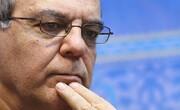 انتقاد عباس عبدی از اجرا نشدن لایحه اعطای تابعیت به فرزندان مادران ایرانی