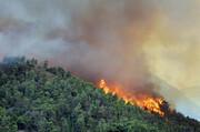 مهمترین عامل آتشسوزی زمستانه جنگلهای شمال ایران