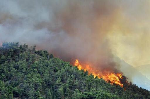 آتشسوزي - جنگل هيركاني
