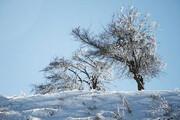 کاهش ۱۲ درجهای دمایهوا در آذربایجانغربی | یخبندان در راه است