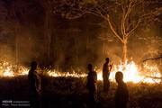 ادامه مهار آتش در مناطق جنگلی گیلان
