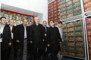 تامین میوه شب عید در آذربایجان شرقی