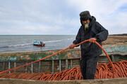 تصویر | صید ماهی در شبه جزیره «میانکاله»