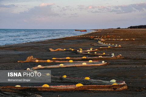 صید ماهی در شبهجزیره میانکاله
