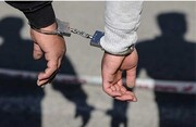 پیشنهاد پلیس: رد مال توسط سارقان باید اجباری شود