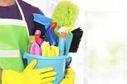 خانهتکانی آسان | فرمولی سریع برای مردان و زنان شاغل