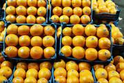 تعیین قیمت پرتقال مازندران برای بازار شب عید