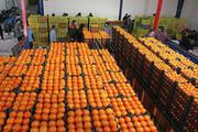 ذخیرهسازی ۷ هزار و ۵۰۰ تن سیب و پرتقال برای شب عید تهران