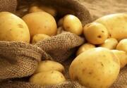 خواص باورنکردنی سیبزمینی؛ از جوانسازی پوست تا حفظ سلامت قلب