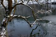 تصویر   دریاچه فراخین در برف