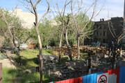 خریداری ۲۰ باغ تهران توسط شهرداری تهران   بوستان وثوقالدوله تا پایان ۹۸ افتتاح میشود