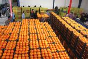 ذخیرهسازی هزار و ۲۰۰ تن میوه ویژه عید در هرمزگان