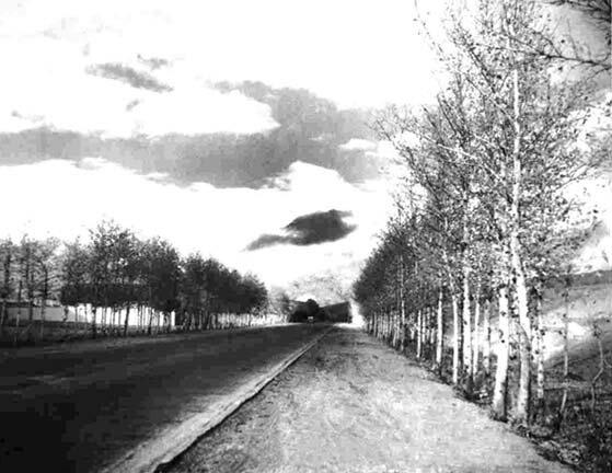 عکس قدیمی تهرانسر