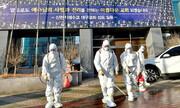 کرونا در کره |۱۲۳ مبتلای تازه و دو مرگ دیگر