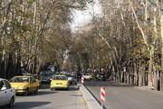 استقبال از بهار با کاشت هزار اصله نهال در خیابان ولی عصر(عج)
