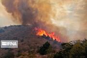 آتشسوزی باغهای پسته قطبآباد اردکان مهار شد