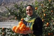 تصویر | روستای میجان در جیرفت
