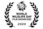نمایش مستند ایرانی «در گرداب انقراض» در سازمان ملل