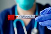 ۳۱ نفر در استان البرز به ویروس کرونا مبتلا شدند