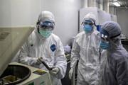 ابتلای ۴۸ نفر در آذربایجانشرقی به ویروس کرونا