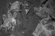 زبالههای کرونایی، ویروسهای خاموش