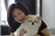 سگ هنگکنگی کرونا مثبت شد | انتقال ویروس از انسان به حیوان