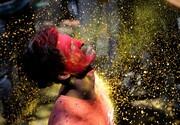 عکس روز: جشن رنگها