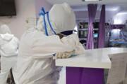 ۵۱ عضو کادر درمانی شاهیندژ به کرونا مبتلا شدند