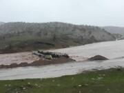 هشدار به مناطق غربی و در مجاورت رودخانهها | کوچ عشایر با تأخیر انجام شود